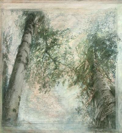 Karina Chechik, 'Los bosques de la tierra del fuego', 2017