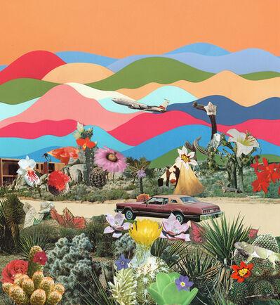 TED FEIGHAN, 'Desert Trip', 2019
