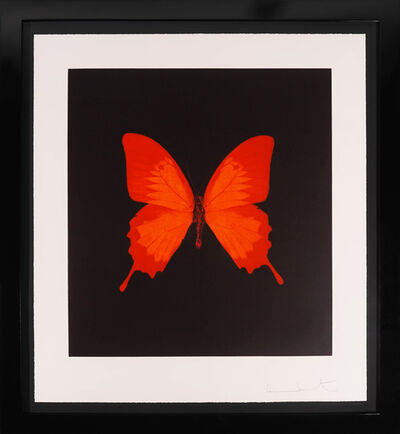 Damien Hirst, 'Butterfly Soul Etching, Red ', 2007