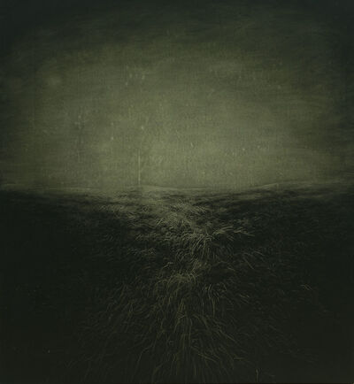Heng Li, 'Tree of  Light', 2015