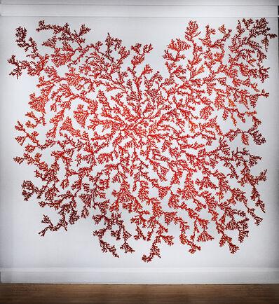 Carson Fox, 'Coral Installation'