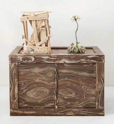 Jeanne Silverthorne, 'Venus Flytrap with Xerxes Blue (Extinct), Two Crates', 2012-19