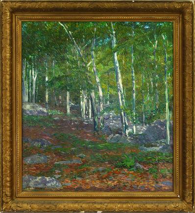 Charles S Kaelin, 'Summer- Kaelin's Woods'