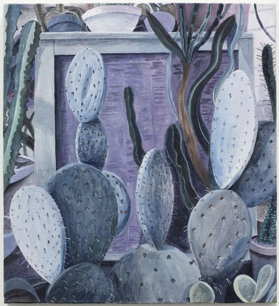 Charlie Roberts, 'Succulents in Lavender', 2015