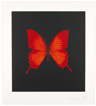 Damien Hirst, 'The Souls on Jacob's Ladder Take Their Flight (Plate 3)', 2007