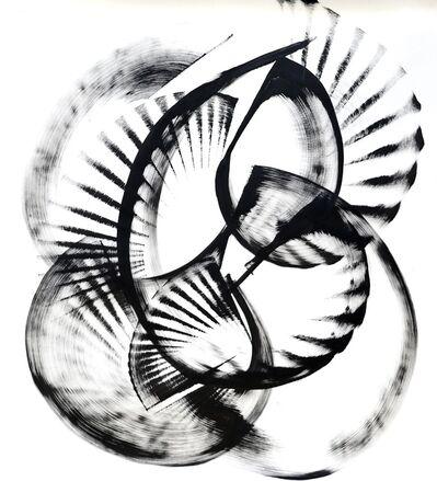 Thomas Hammer, 'Flabellidium Spinosum (framed)', 2015