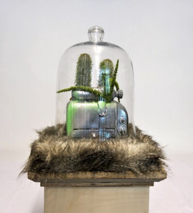 William Sweetlove, 'Cloned Toaster with Petbottle', 2017