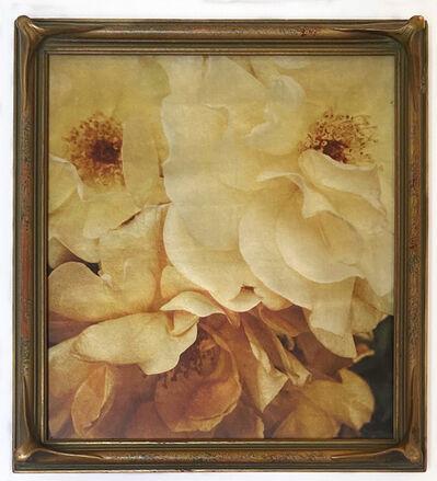 Wendi Schneider, 'Old Roses', 2014