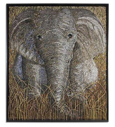 Federico Uribe, 'Elephant', 2016