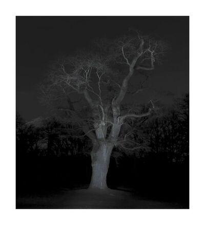 Ralf Peters, 'Winter #7', 2016