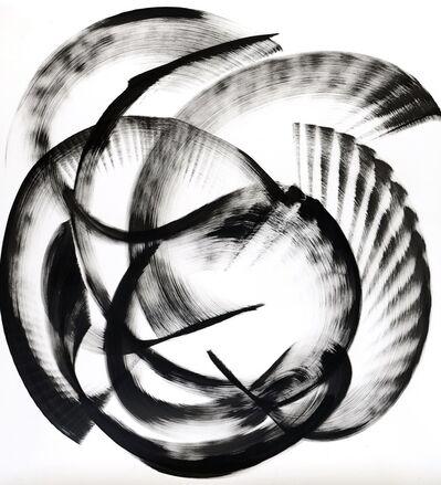 Thomas Hammer, 'Myrcia Skeldingii', 2015