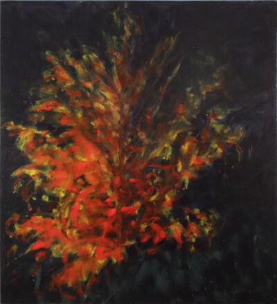 Julian Khol, 'Ahorn', 2013