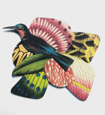 Sammy Slabbinck, 'Bird 1', 2019