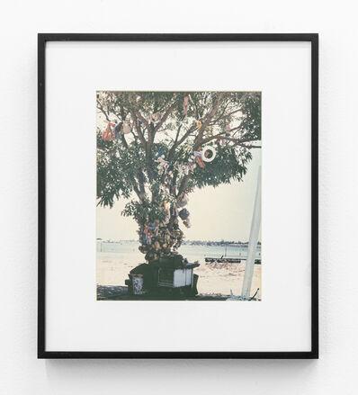 Paulo Bruscky, 'Sculpture tree', 1986