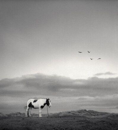 Pentti Sammallahti, 'Druridge Bay, England,', 1998