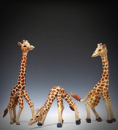 Matt Robertson, 'Giraffe Group (Triptych)', 2014
