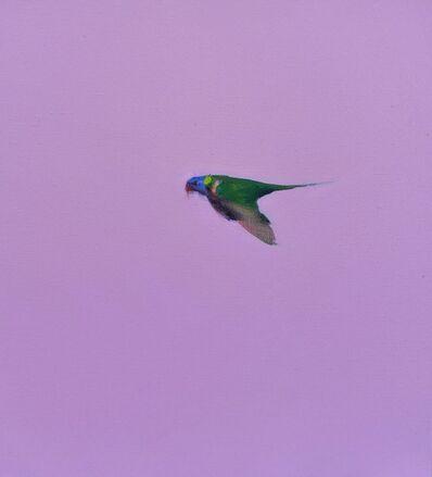 Matthew Kentmann, 'Fly away little bird', 2019