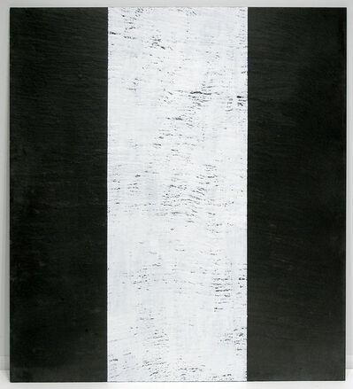 Richard Long, 'Untitled', 2008