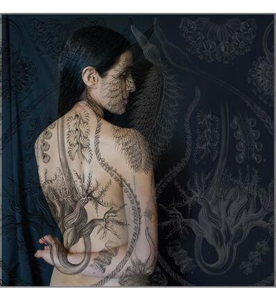 Tatiana Parcero, 'Universus #26', 2014