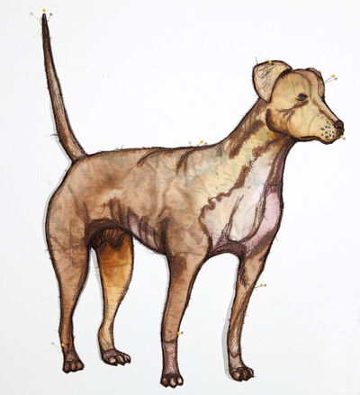Gina Phillips, 'Give a Dog a Bone (Yellow Catahoula Hound)', 2011