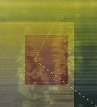 James Cousins, '206 Erica 'C avendishiana'', 2012