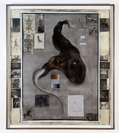 Hugo Wilson, 'Equine survey', 2013
