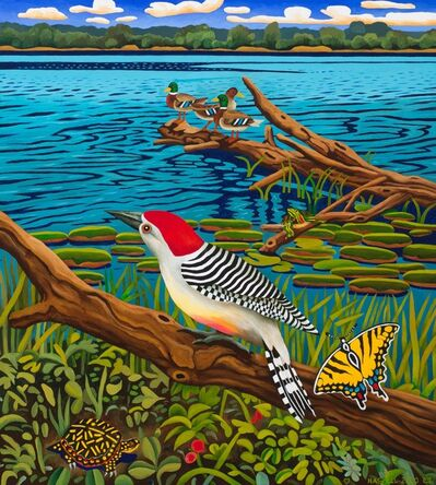 Billy Hassell, 'Red-bellied Woodpecker', 2020