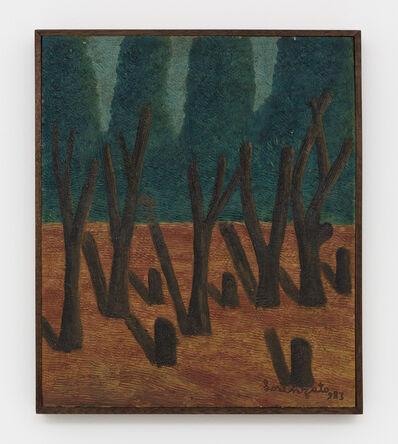 Amadeo Luciano Lorenzato, 'Floresta / Wood', 1983