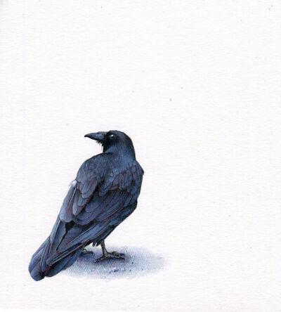 Dina Brodsky, 'Raven', 2019