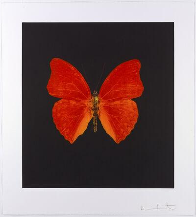 Damien Hirst, 'Memento', 2008