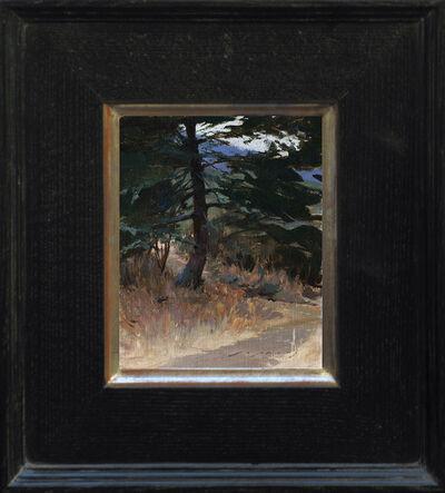 Jeremy Lipking, 'Lone Pine', 2013