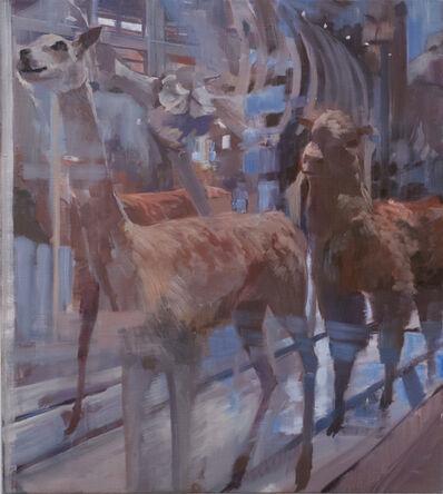 Adam Cvijanovic, 'Naming the Animals (1)', 2012
