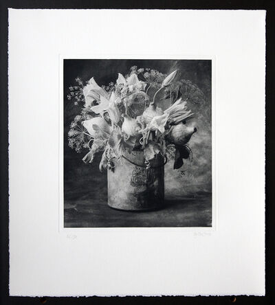 Cy DeCosse, 'Squash Flower and dill'
