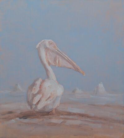 Miguel Branco, 'Untitled ( Pelican)', 2017