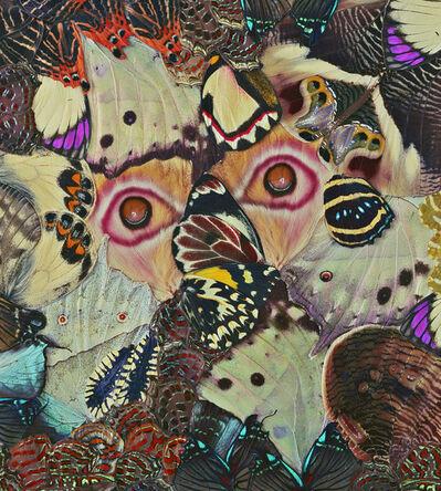 Nathalia Edenmont, 'Beyond'