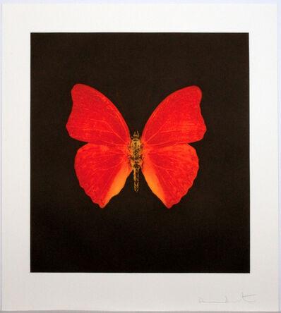 Damien Hirst, 'Damien Hirst, Memento - Orange Big Butterfly', 2008