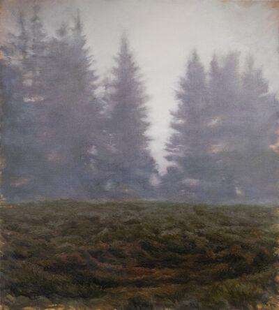 Jennifer Krause Chapeau, 'Beyond the Conifers', 2017