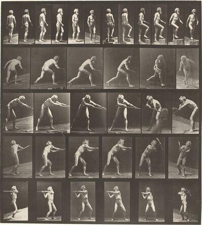 Eadweard Muybridge, 'Animal Locomotion, Plate 521', 1887