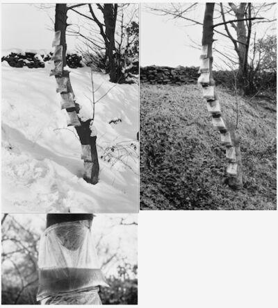 Ed Herring, 'Tea-Bag Piece', 1968-1969