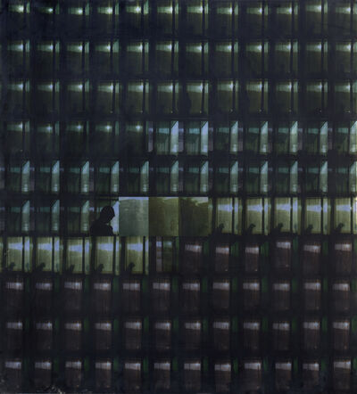 Liang Juhui, 'Protective Screen 1∣', 2005