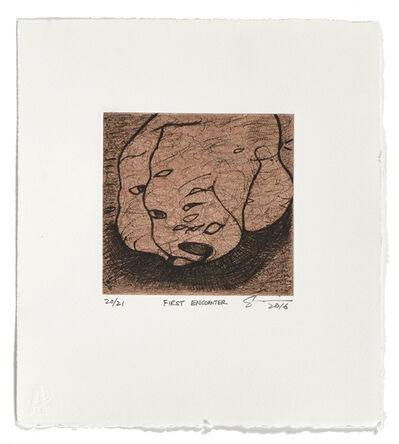 Ed Pien, 'First Encounter', 2016