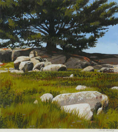 June Grey, 'Maine: Pines and Blueberries', 2011
