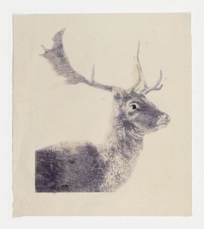 Mamma Andersson, 'The Fallow Deer', 2016
