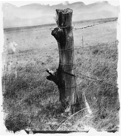 Stephen Inggs, 'Fencespot', 2009