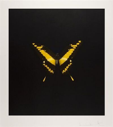 Damien Hirst, 'Yellow Butterfly (The Souls On Jacob's Ladder Take Their Flight)', 2007