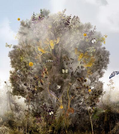 Ysabel Lemay, 'Arborvitae', 2011