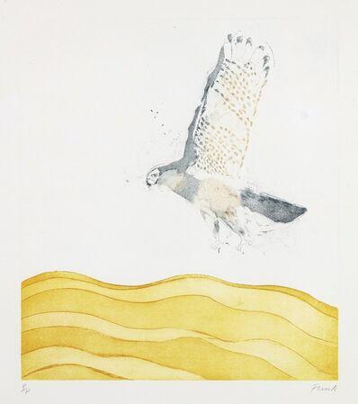 Elisabeth Frink, 'Sparrow Hawk', 1974