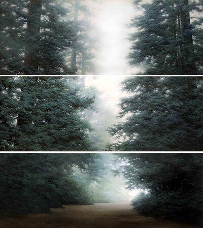 Do Sungwook, 'Condition-Light III', 2012