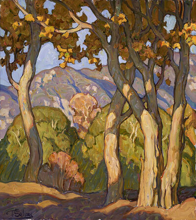 """Tim Solliday, '""""Sunbeams on Sycamores""""'"""