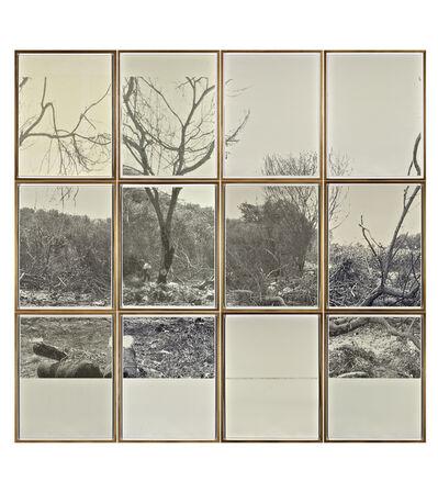 Jerry B. Martin, 'Indented Landscape', 2011